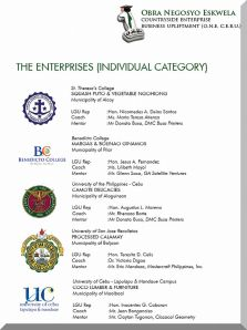 THE ENTERPRISES (INDIVIDUAL CATEGORY)